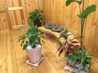 松山で操体を受けるなら【あじさいの杜鍼灸院】へ!こだわりの施術環境が特徴